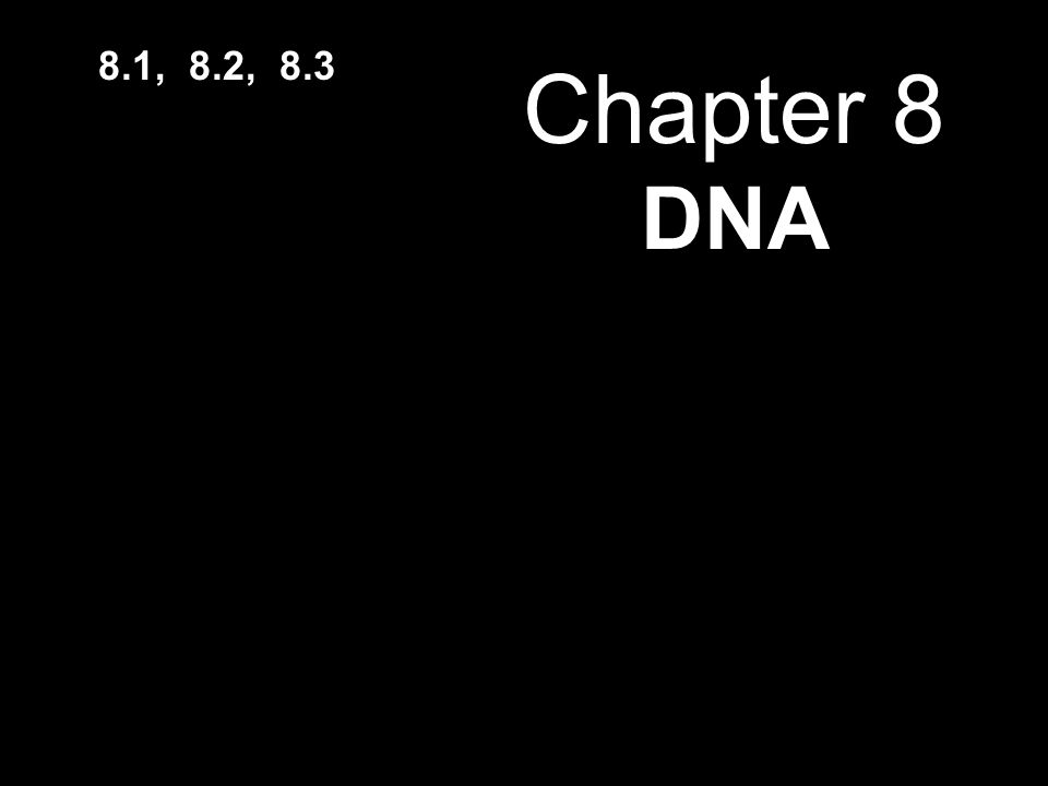 Chapter 8 DNA 8.1, 8.2, 8.3