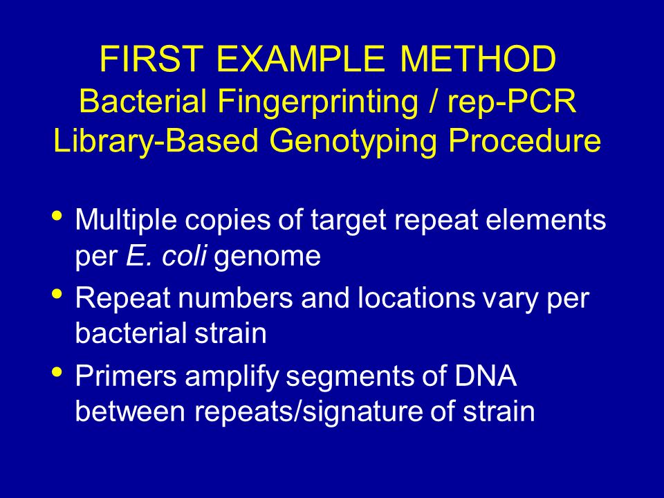 FIRST EXAMPLE METHOD Bacterial Fingerprinting / rep-PCR Library-Based Genotyping Procedure Multiple copies of target repeat elements per E. coli genom