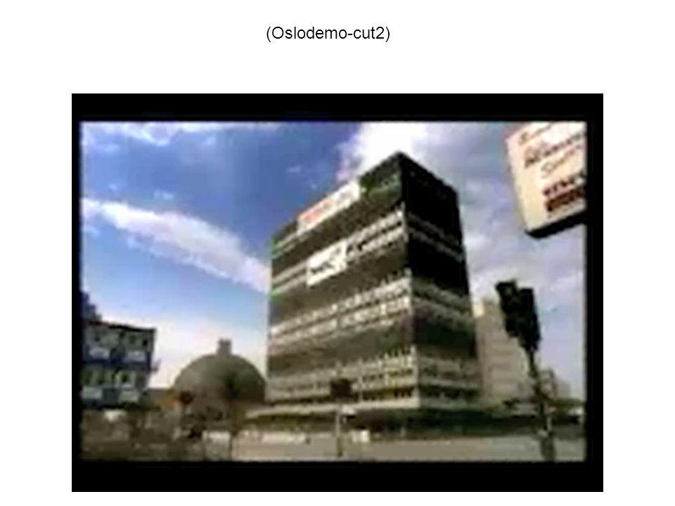 (Oslodemo-cut2)