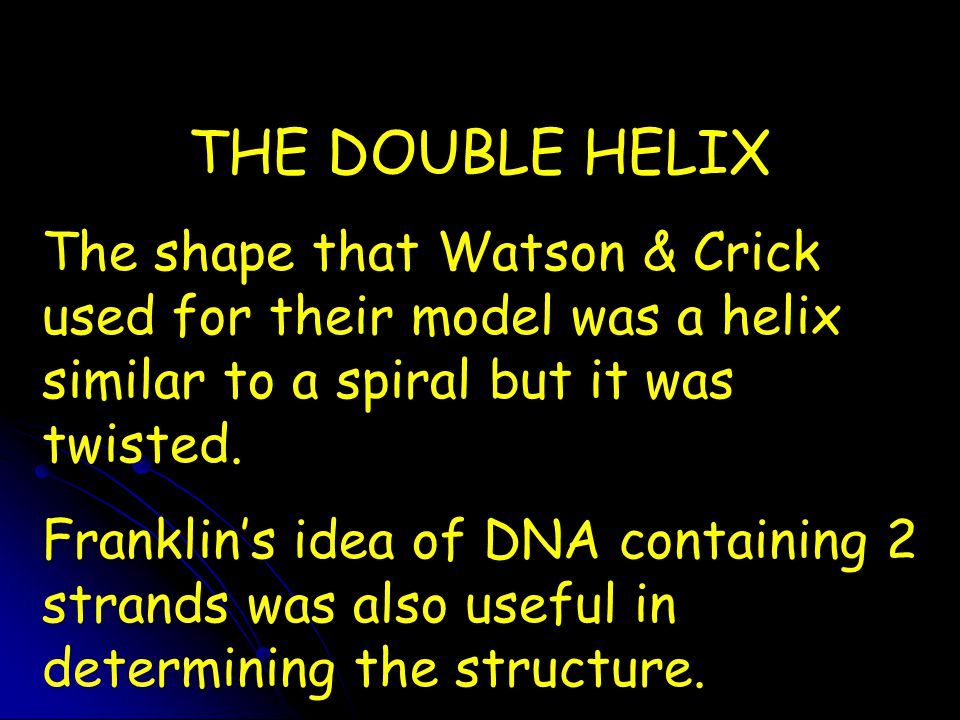 THE DOUBLE HELIX The shape that Watson & Crick used for their model was a helix similar to a spiral but it was twisted.