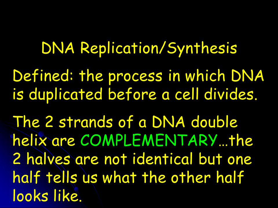 DNA Replication/Synthesis Defined: the process in which DNA is duplicated before a cell divides. The 2 strands of a DNA double helix are COMPLEMENTARY