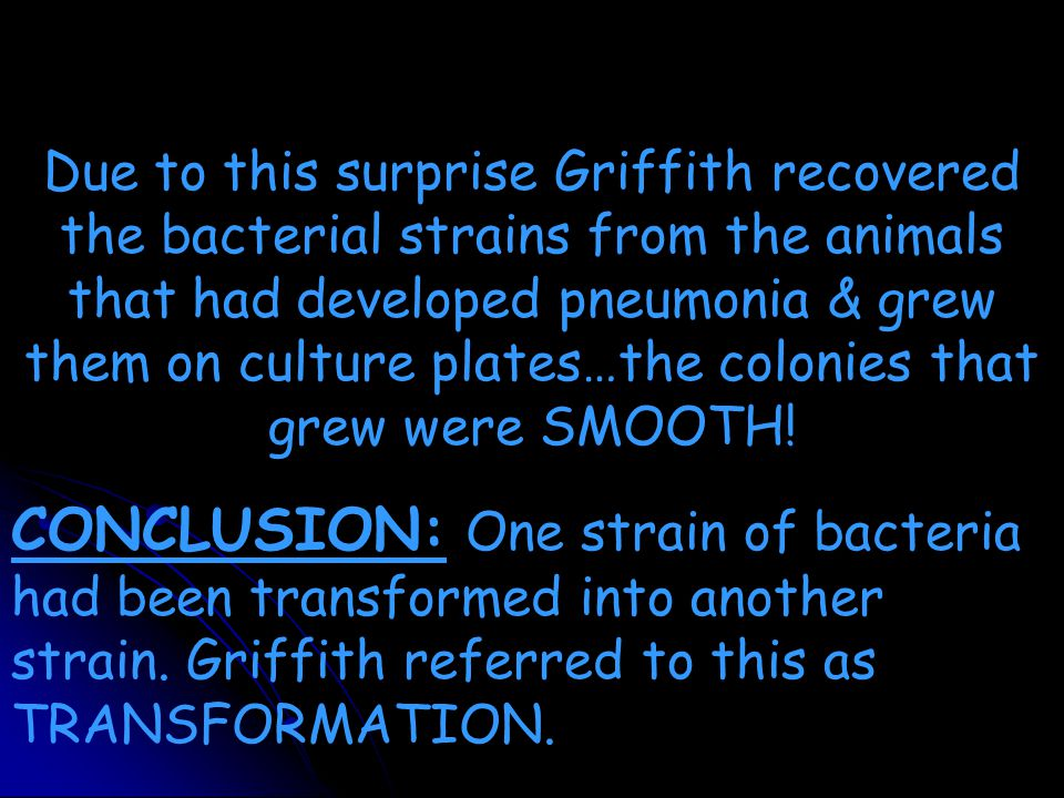 Due to this surprise Griffith recovered the bacterial strains from the animals that had developed pneumonia & grew them on culture plates…the colonies that grew were SMOOTH.