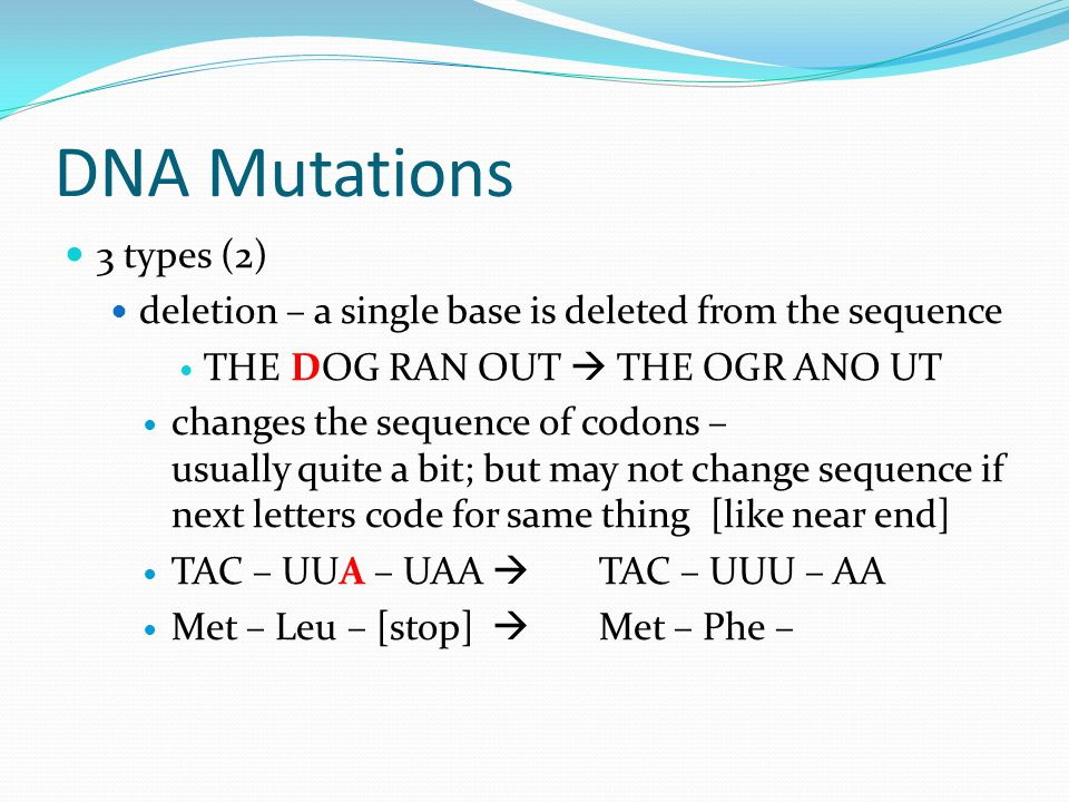 DNA Mutations 3 types (2) deletion – a single base is deleted from the sequence THE DOG RAN OUT  THE OGR ANO UT changes the sequence of codons – usually quite a bit; but may not change sequence if next letters code for same thing [like near end] TAC – UUA – UAA  TAC – UUU – AA Met – Leu – [stop]  Met – Phe –
