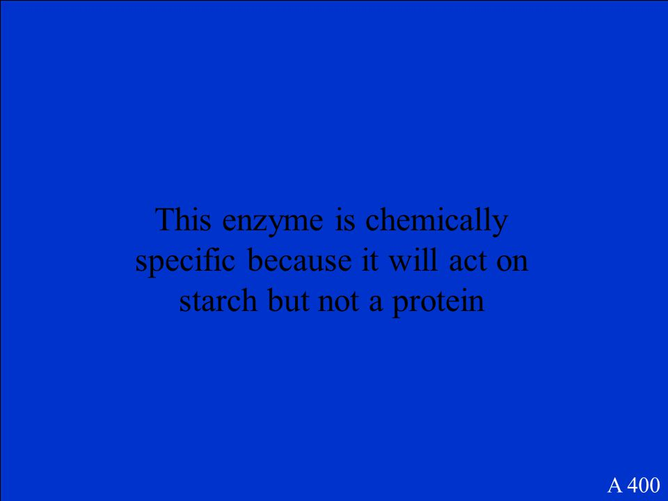 What are enzymes? A 300