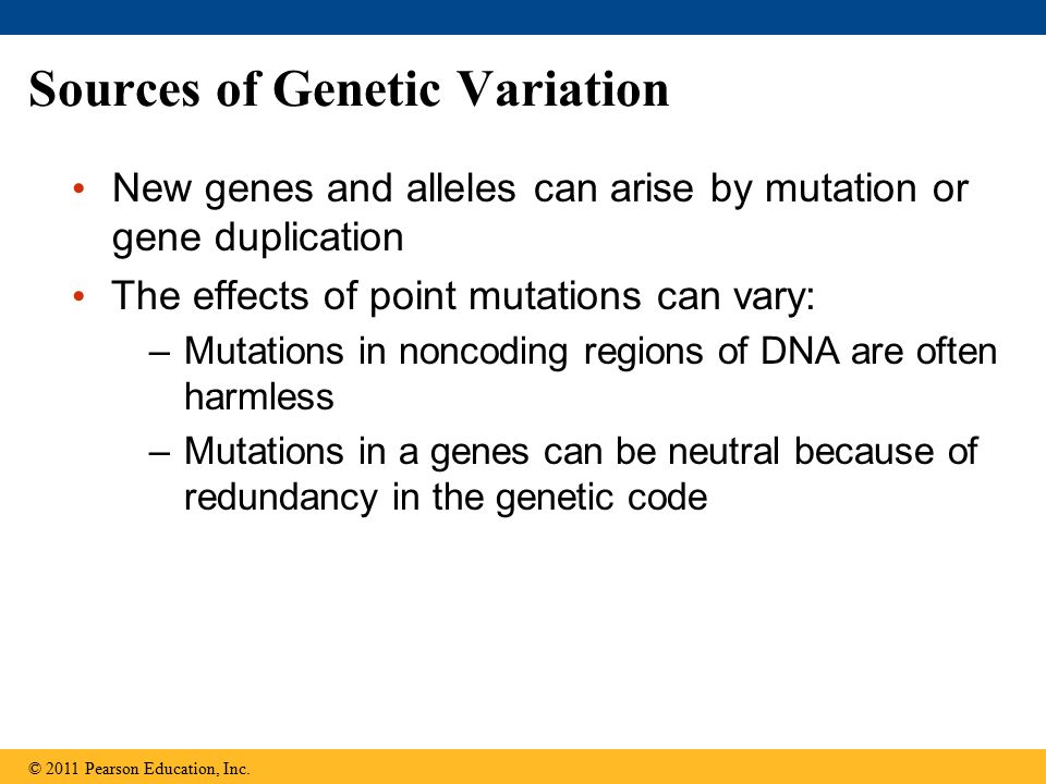 Sources of Genetic Variation New genes and alleles can arise by mutation or gene duplication The effects of point mutations can vary: –Mutations in no