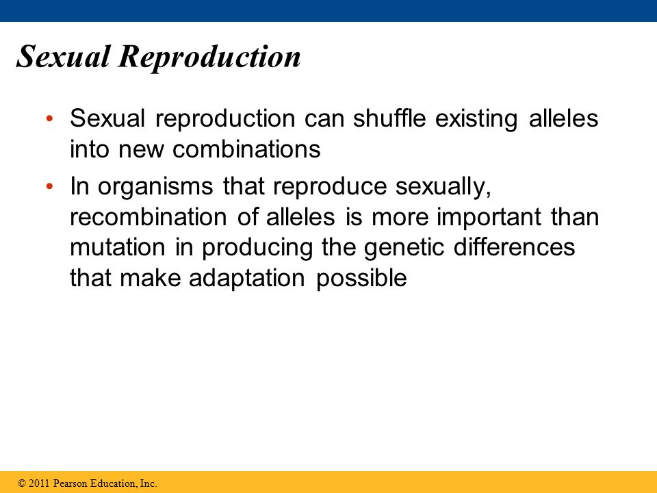 Sexual Reproduction Sexual reproduction can shuffle existing alleles into new combinations In organisms that reproduce sexually, recombination of alle