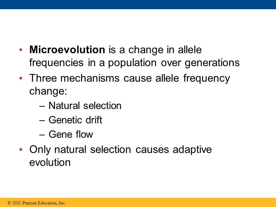 Microevolution is a change in allele frequencies in a population over generations Three mechanisms cause allele frequency change: –Natural selection –