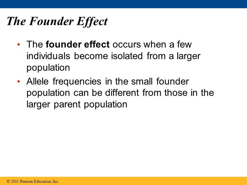 The Founder Effect The founder effect occurs when a few individuals become isolated from a larger population Allele frequencies in the small founder p