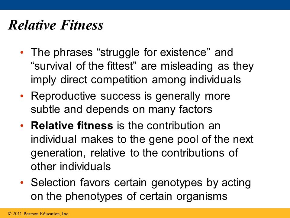 "Relative Fitness The phrases ""struggle for existence"" and ""survival of the fittest"" are misleading as they imply direct competition among individuals"