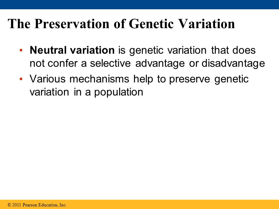 The Preservation of Genetic Variation Neutral variation is genetic variation that does not confer a selective advantage or disadvantage Various mechan