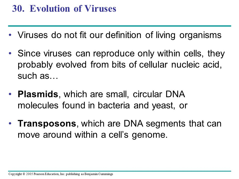 Copyright © 2005 Pearson Education, Inc. publishing as Benjamin Cummings 30. Evolution of Viruses Viruses do not fit our definition of living organism