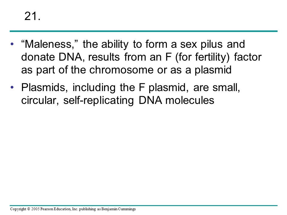 """Copyright © 2005 Pearson Education, Inc. publishing as Benjamin Cummings """"Maleness,"""" the ability to form a sex pilus and donate DNA, results from an F"""