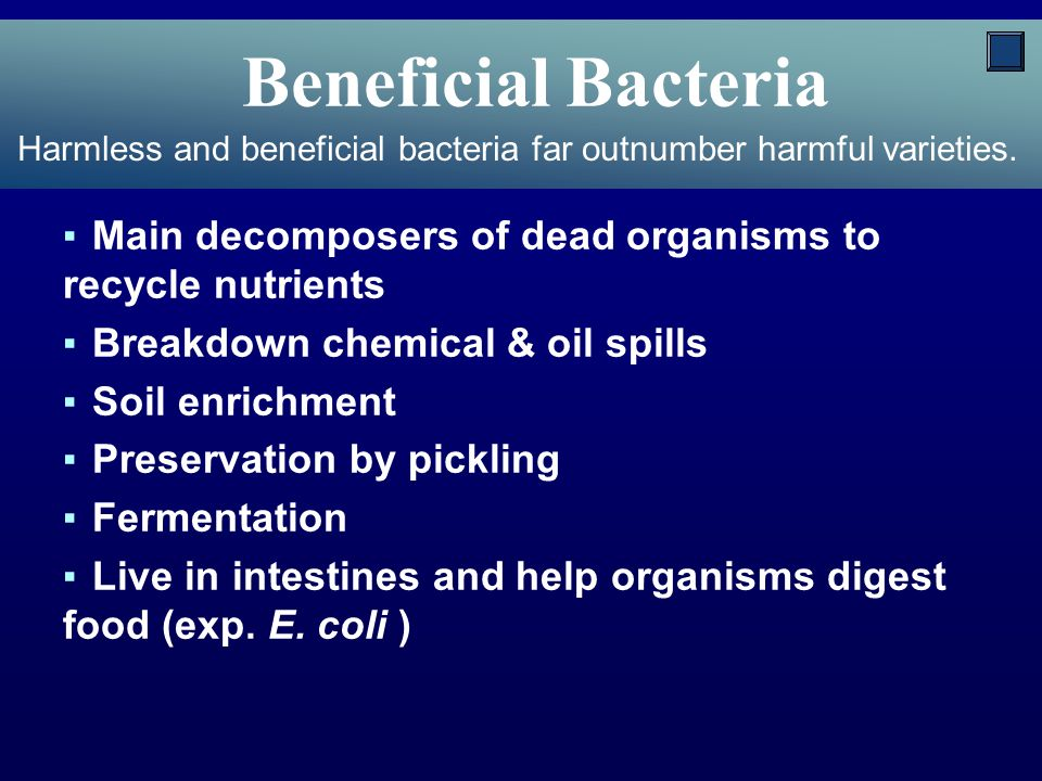 Harmful Bacteria ▪Some bacteria are known as pathogens ▪Cause disease ▪Can produce poisonous toxins