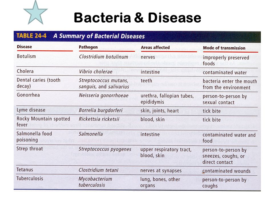 Bacteria & Disease