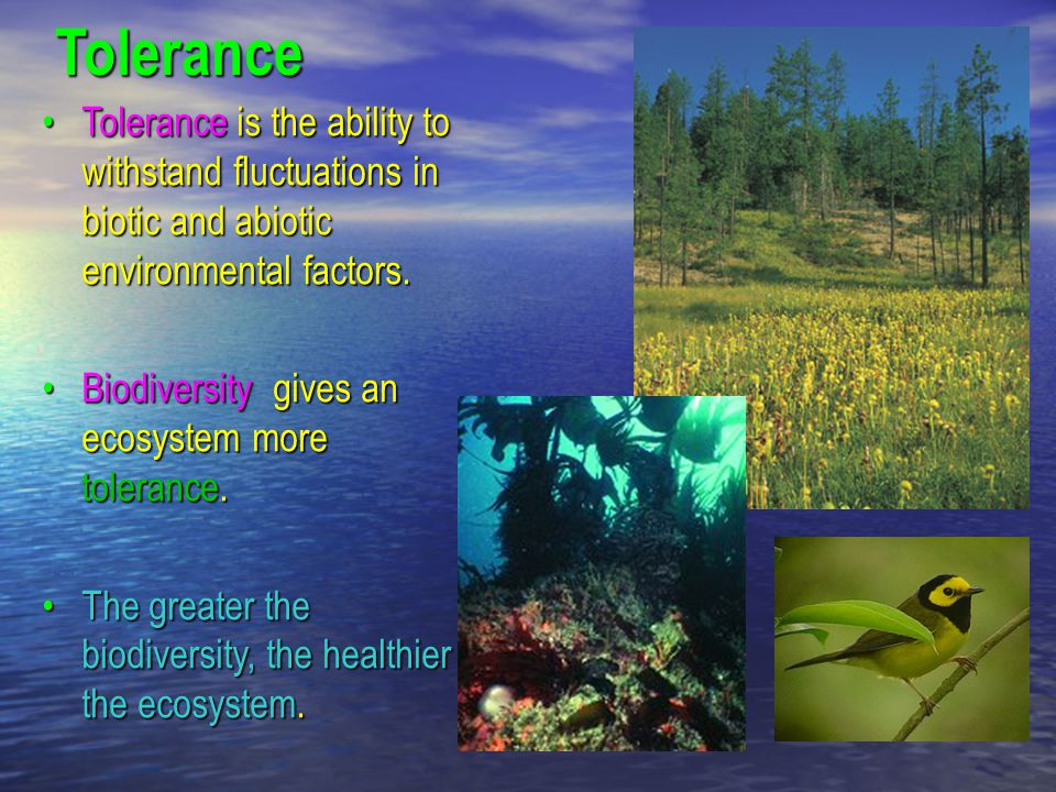 Tolerance Tolerance is the ability to withstand fluctuations in biotic and abiotic environmental factors.Tolerance is the ability to withstand fluctua