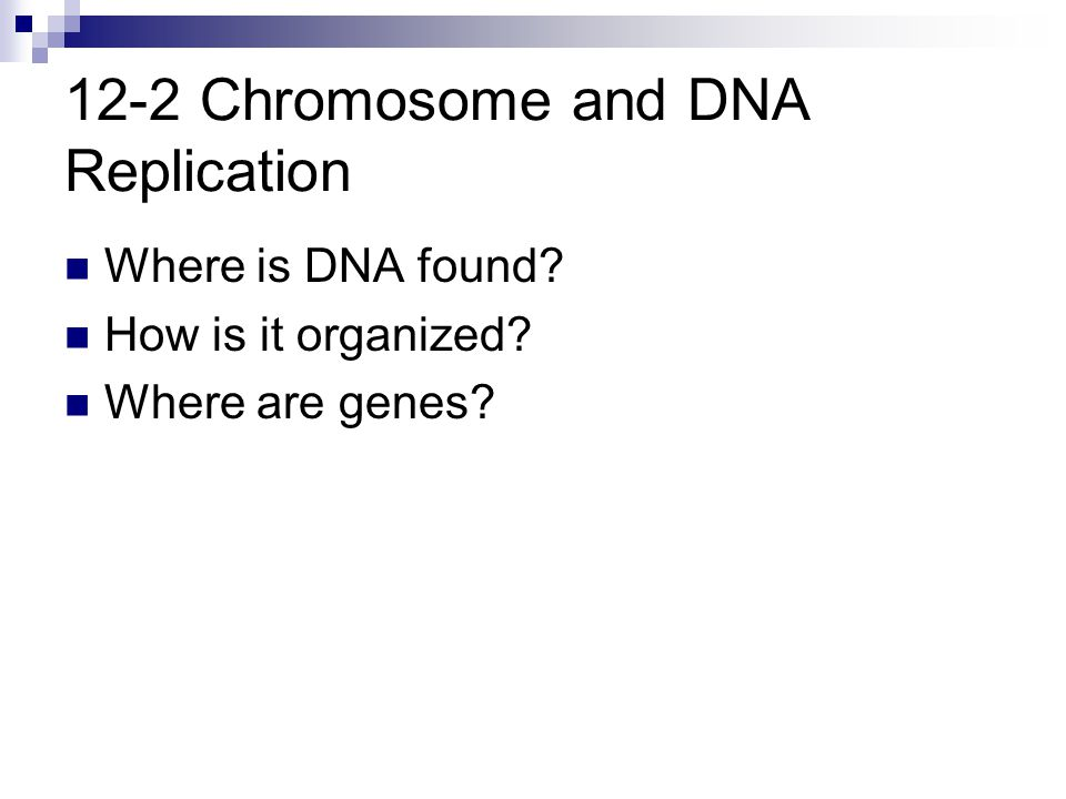 12-2 Chromosome and DNA Replication Where is DNA found? How is it organized? Where are genes?