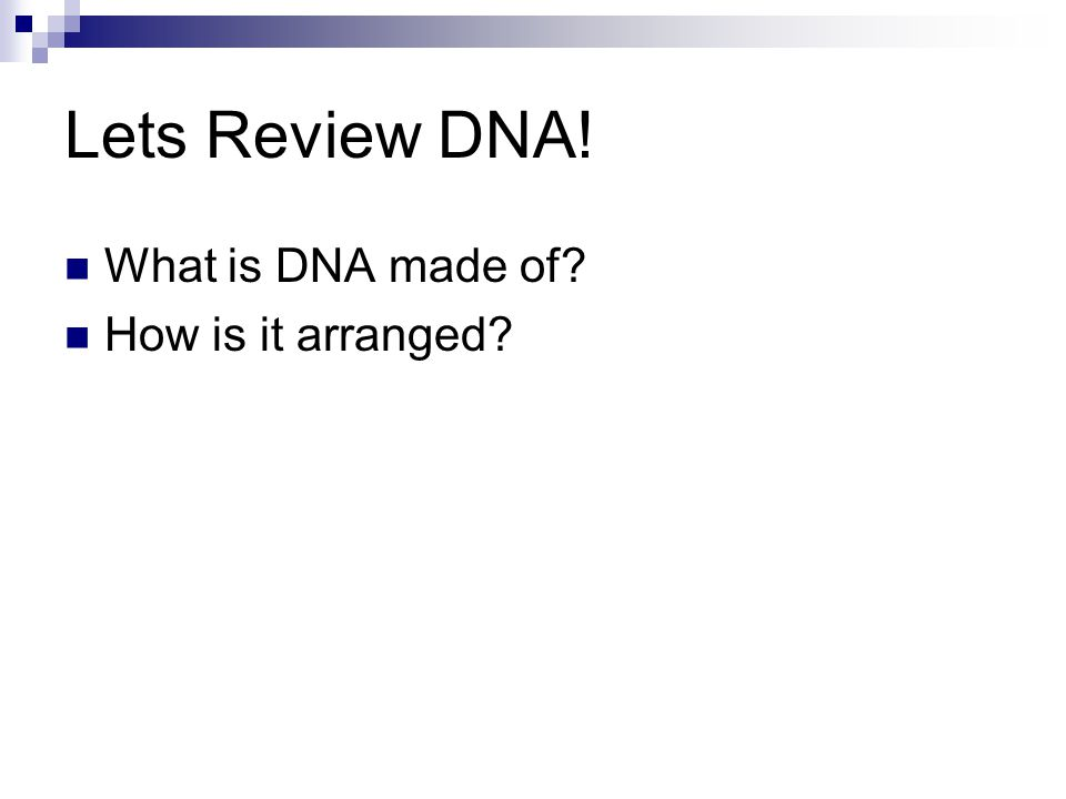 Lets Review DNA! What is DNA made of How is it arranged