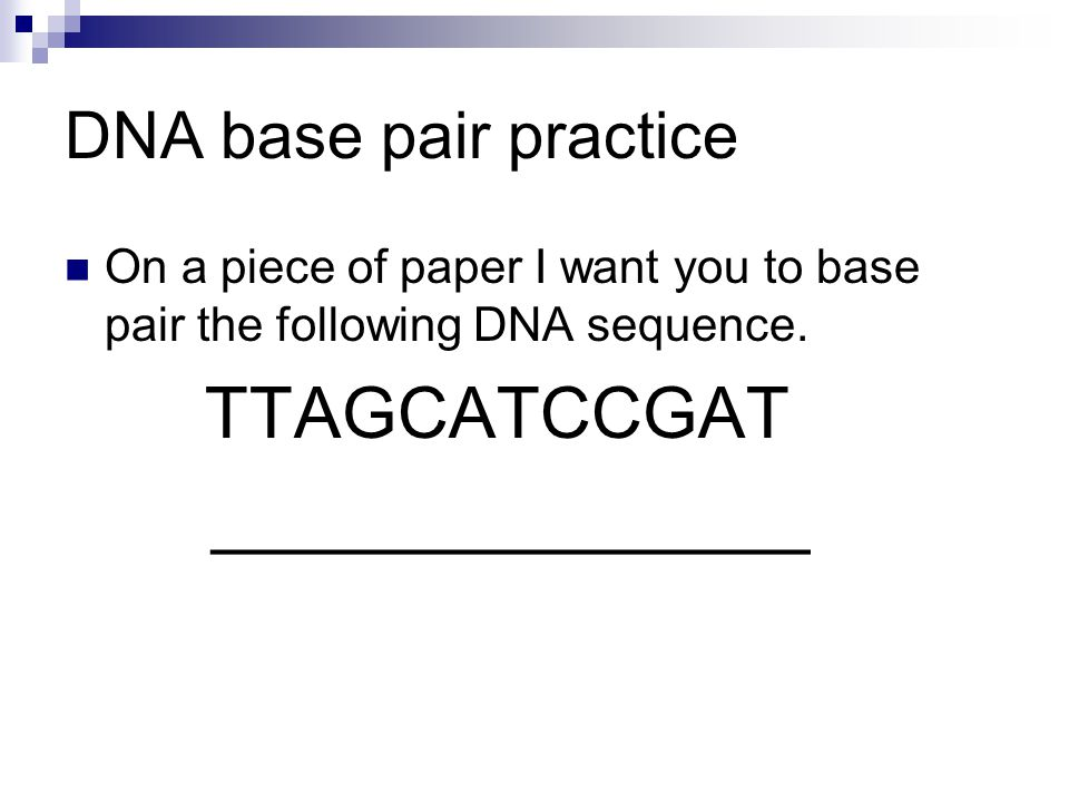 DNA base pair practice On a piece of paper I want you to base pair the following DNA sequence.