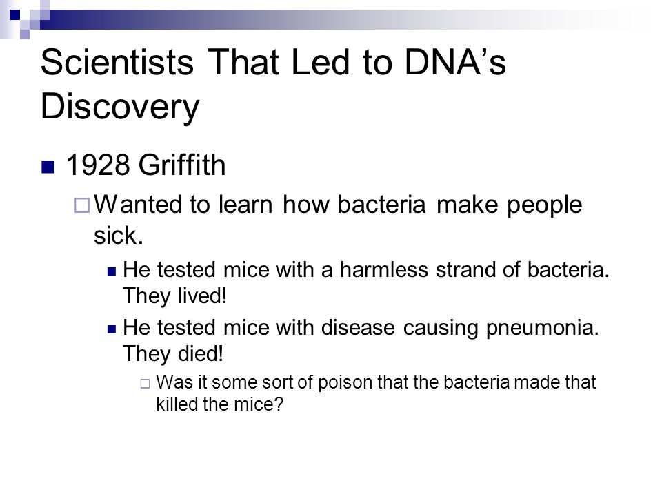 Scientists That Led to DNA's Discovery 1928 Griffith  Wanted to learn how bacteria make people sick.