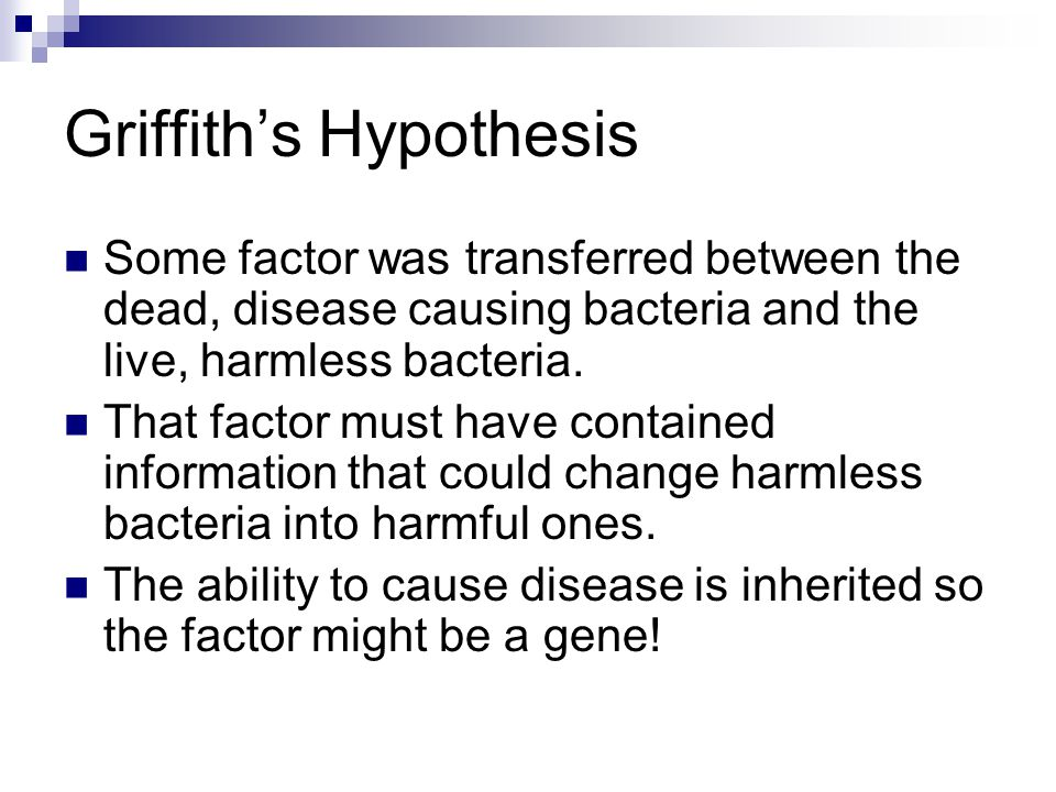 Griffith's Hypothesis Some factor was transferred between the dead, disease causing bacteria and the live, harmless bacteria. That factor must have co