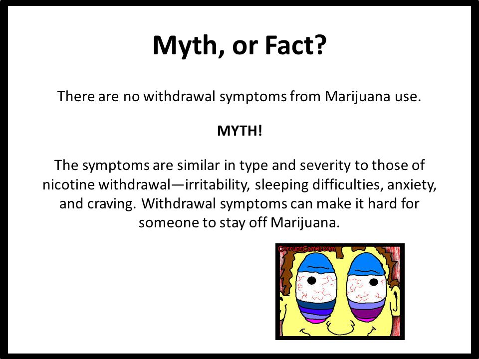 Myth, or Fact. There are no withdrawal symptoms from Marijuana use.