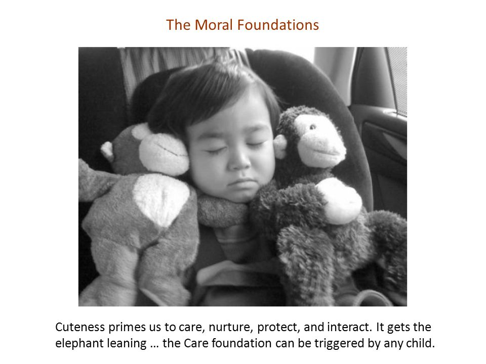 The Moral Foundations Cuteness primes us to care, nurture, protect, and interact. It gets the elephant leaning … the Care foundation can be triggered