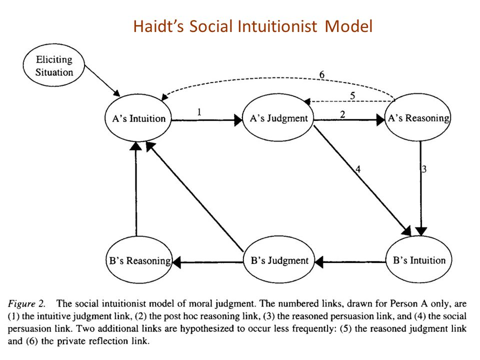 Haidt's Social Intuitionist Model