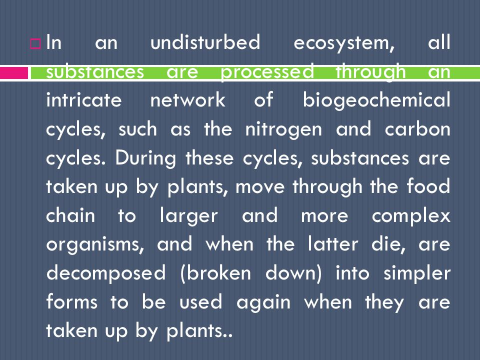  In an undisturbed ecosystem, all substances are processed through an intricate network of biogeochemical cycles, such as the nitrogen and carbon cycles.