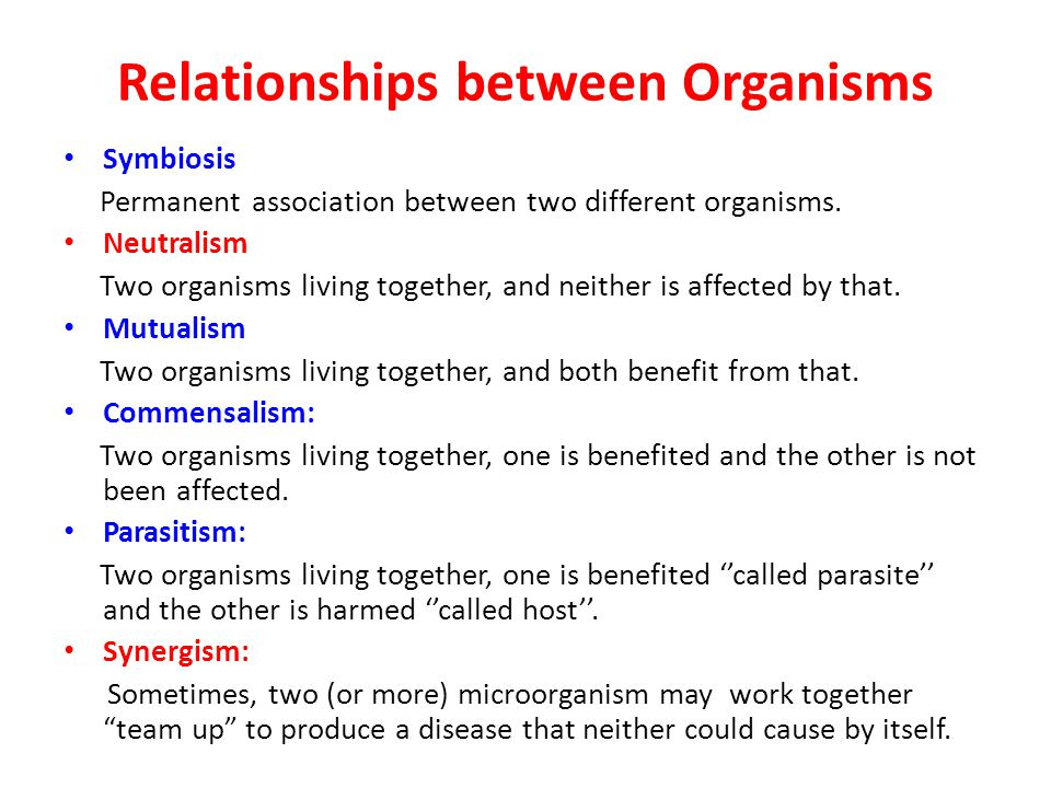 Relationships between Organisms Symbiosis Permanent association between two different organisms. Neutralism Two organisms living together, and neither