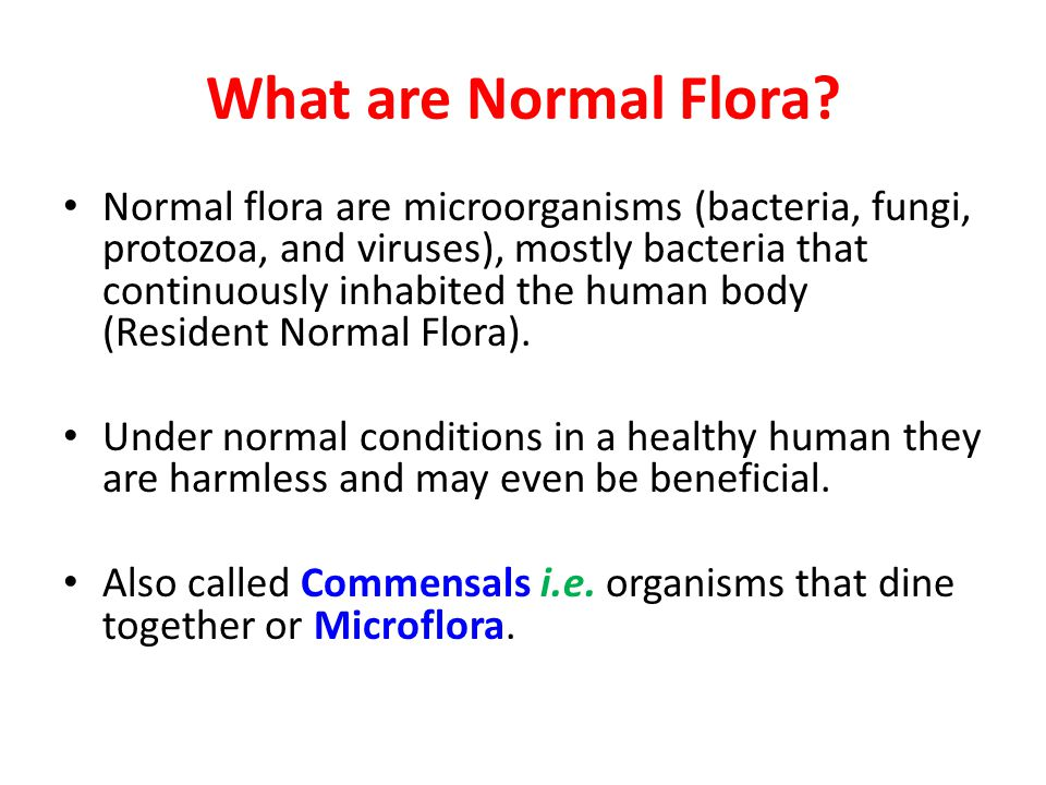 Stuff about Normal Flora A fetus is sterile when born (No Normal Flora), then newborn start having the normal flora from its mother, air, food and the environment.