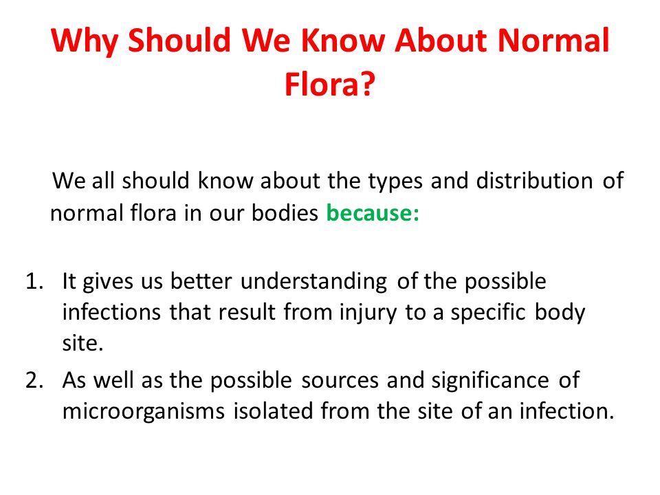 Transient Normal Flora Normal flora that are temporarily living on and within humans.