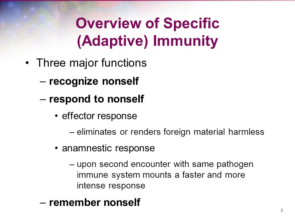 Four Characteristics of Specific Immunity Discrimination between self and non-self –usually responds selectively to non-self, producing specific responses against the stimulus Diversity –generates enormous diversity of molecules Specificity –can be directed against one specific pathogen or foreign substance among trillions Memory –response to a second exposure to a pathogen is so fast that there is no noticeable pathogenesis 3