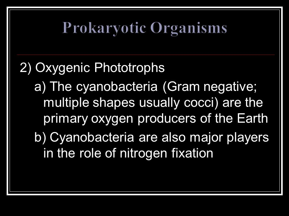 2) Oxygenic Phototrophs a) The cyanobacteria (Gram negative; multiple shapes usually cocci) are the primary oxygen producers of the Earth b) Cyanobacteria are also major players in the role of nitrogen fixation