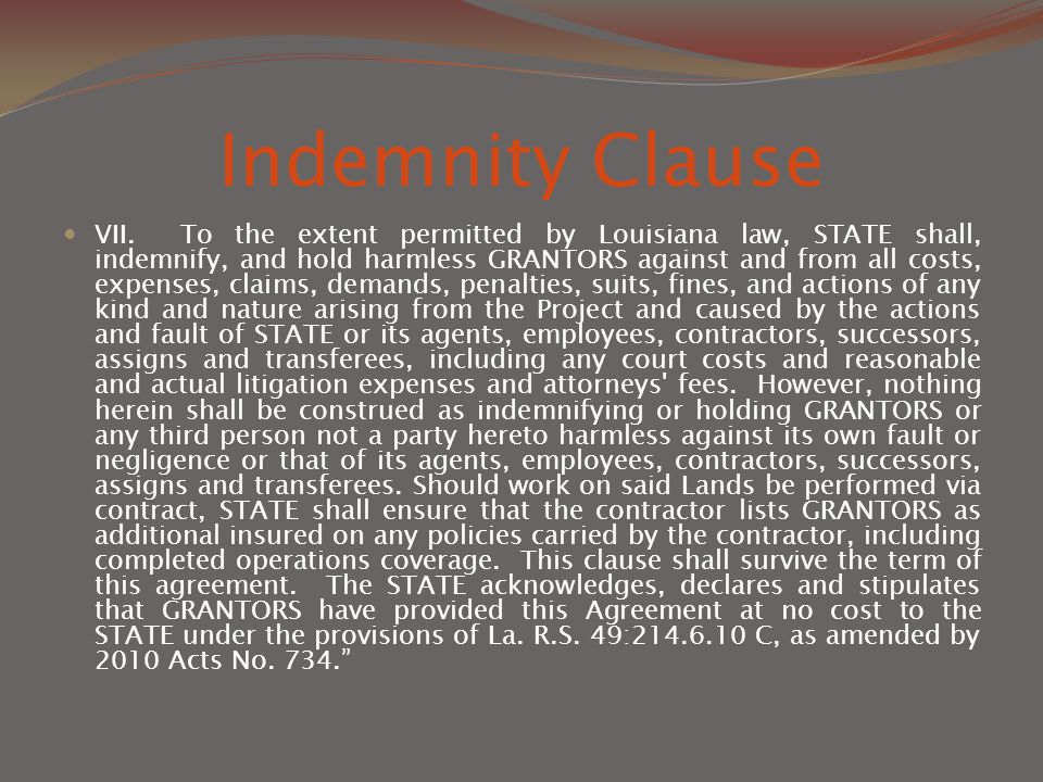 Indemnity Clause VII.
