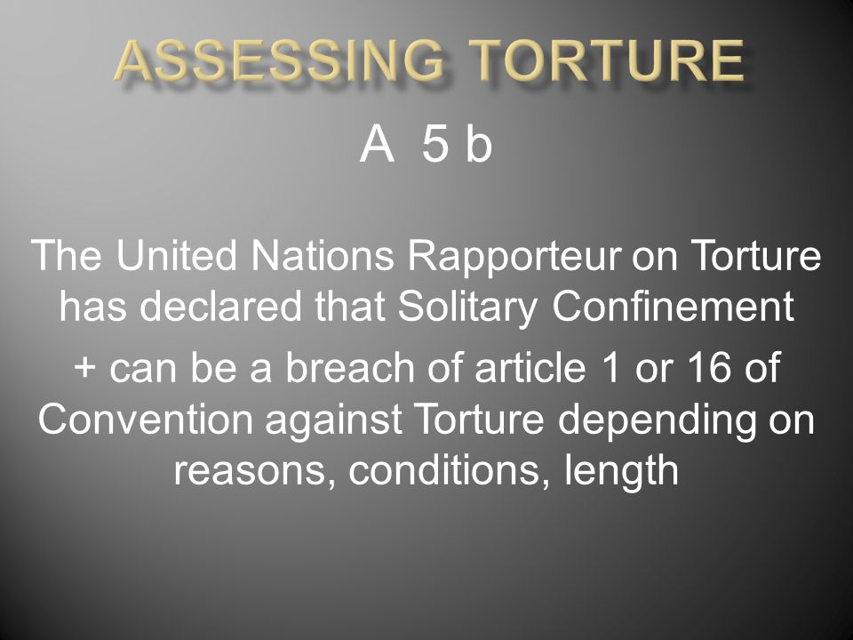 A 5 b The United Nations Rapporteur on Torture has declared that Solitary Confinement + can be a breach of article 1 or 16 of Convention against Torture depending on reasons, conditions, length
