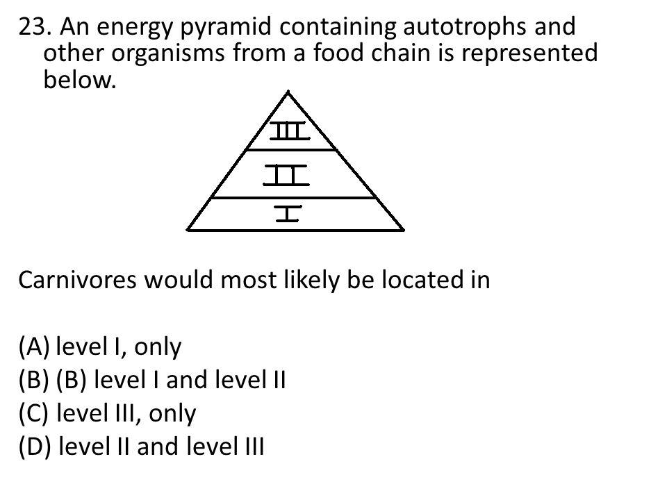 (C) level III, only