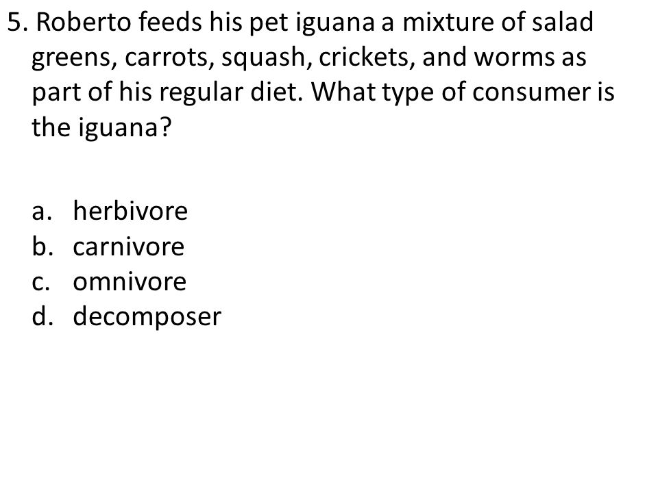 5. Roberto feeds his pet iguana a mixture of salad greens, carrots, squash, crickets, and worms as part of his regular diet. What type of consumer is