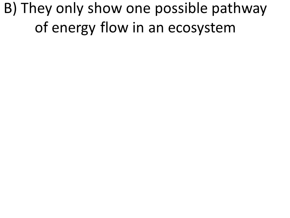 B) They only show one possible pathway of energy flow in an ecosystem