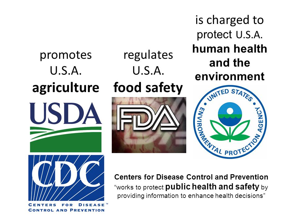 promotes U.S.A. agriculture regulates U.S.A. food safety is charged to protect U.S.A.