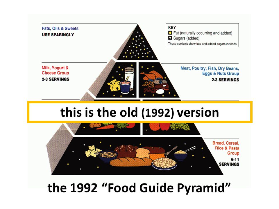the 1992 Food Guide Pyramid this is the old (1992) version