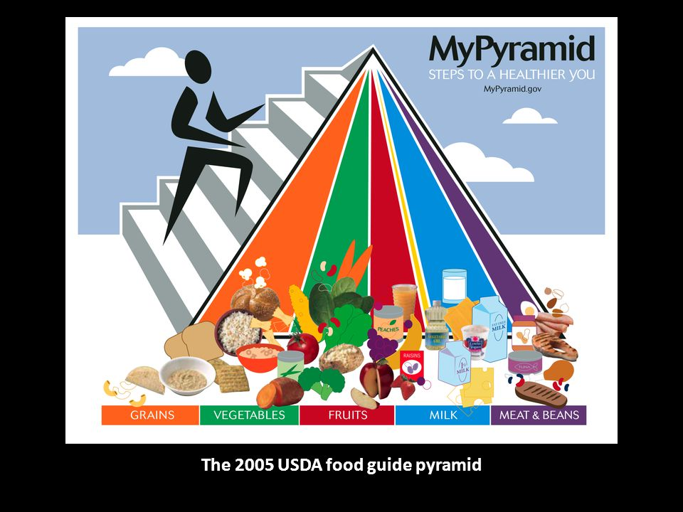 The 2005 USDA food guide pyramid