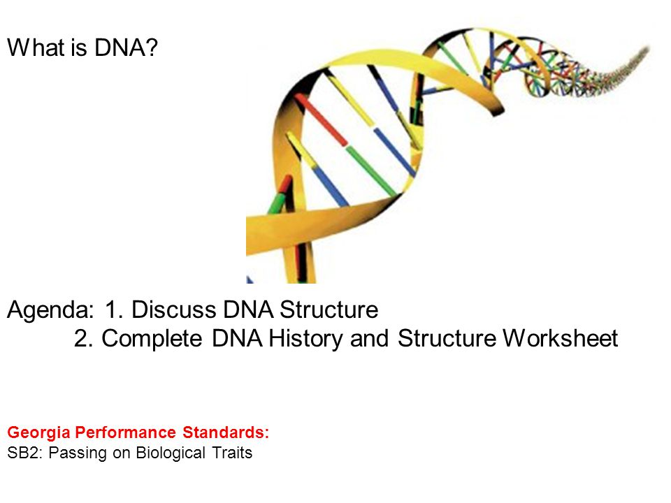What is DNA? Agenda: 1. Discuss DNA Structure 2. Complete DNA History and Structure Worksheet Georgia Performance Standards: SB2: Passing on Biologica