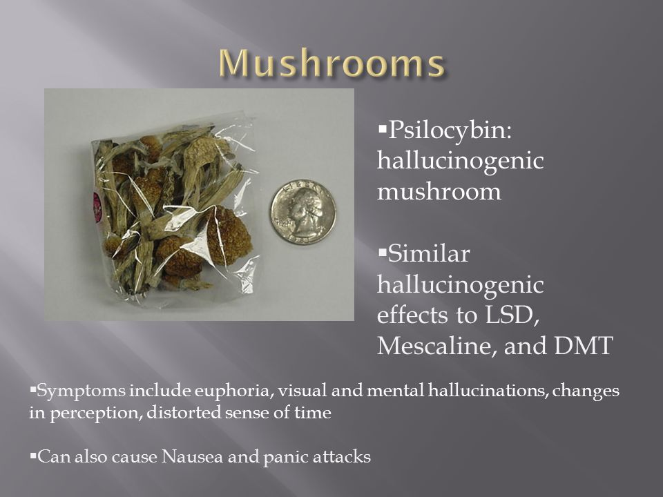  Psilocybin: hallucinogenic mushroom  Similar hallucinogenic effects to LSD, Mescaline, and DMT  Symptoms include euphoria, visual and mental hallucinations, changes in perception, distorted sense of time  Can also cause Nausea and panic attacks
