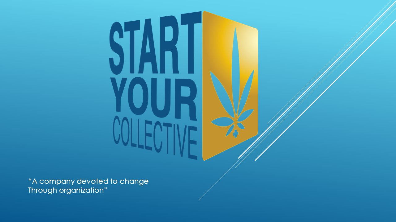 What is Start Your Collective.Where we are located.