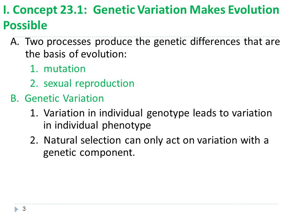 34 7.Effects of Genetic Drift Summary a. Genetic drift is significant in small populations b.
