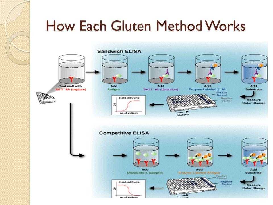 How Each Gluten Method Works