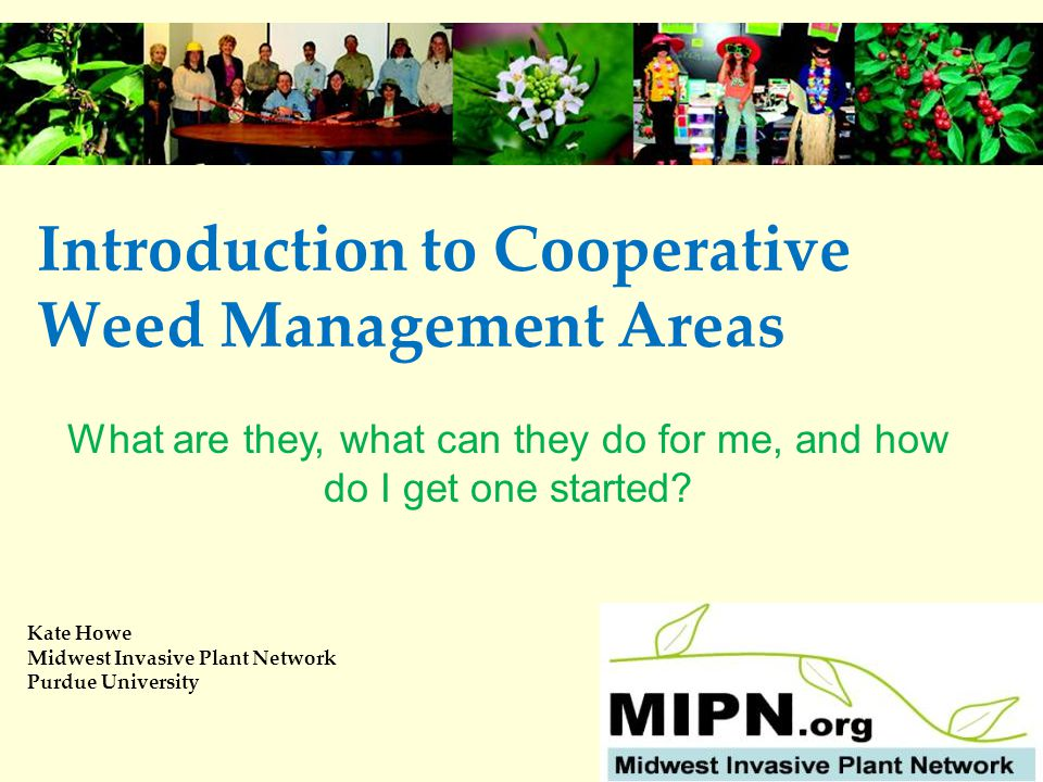 The mission of the Midwest Invasive Plant Network is the reduce the impact of invasive plants in the Midwest.