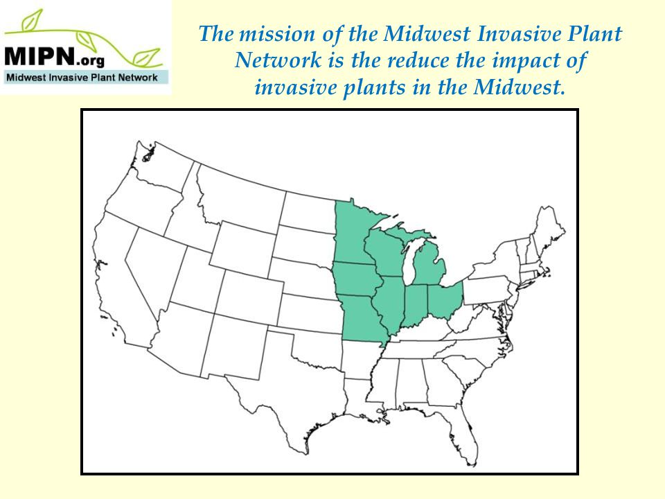 Benefits of a CWMA They can help secure funding for invasive plant projects.