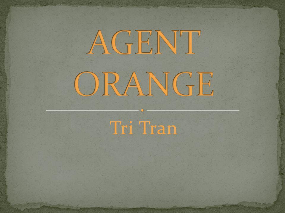 Tri Tran