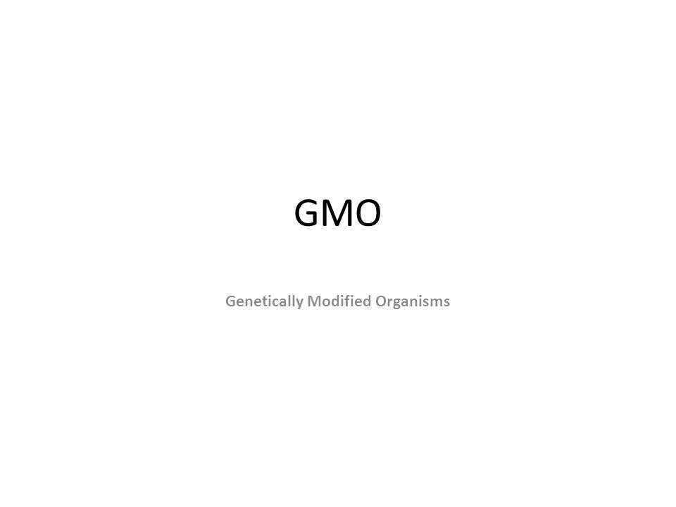 GMO Genetically Modified Organisms